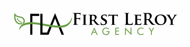 First LeRoy Agency - Insurance